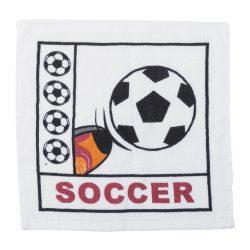 Spica compressed towel