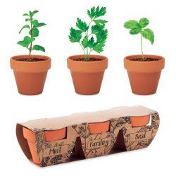 Set vase teracota - 3 ierburi, Item with multi-materials, wood