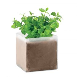 "Compost cu seminte ""MINT"", Item with multi-materials, beige"
