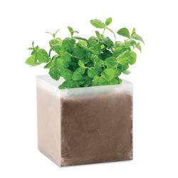 """Compost cu seminte """"MINT"""", Item with multi-materials, beige"""