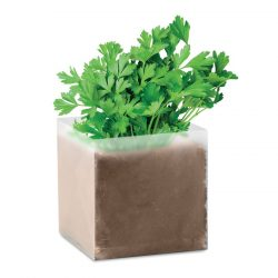 "Compost cu seminte ""PARSLEY"", Item with multi-materials, beige"