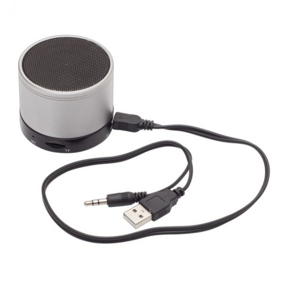 PARTYBEAT speaker with FM radio,  silver