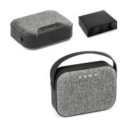 TEDS. Speaker with microphone
